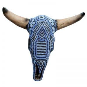 Cabeza de vaca azul