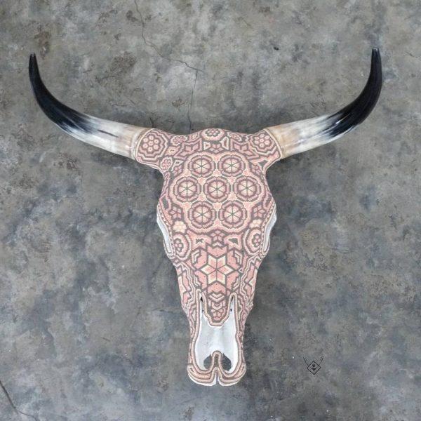 Cabeza de vaca rosa blanco